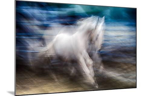 White Beauty-Ursula Abresch-Mounted Photographic Print