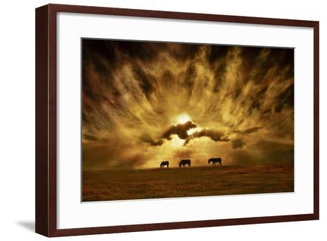 Wild Horses!-Adrian Campfield-Framed Art Print