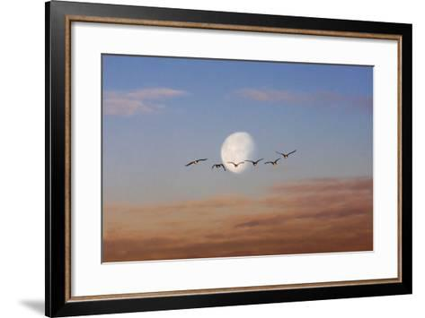 Fly Me to the Moon-Adrian Campfield-Framed Art Print