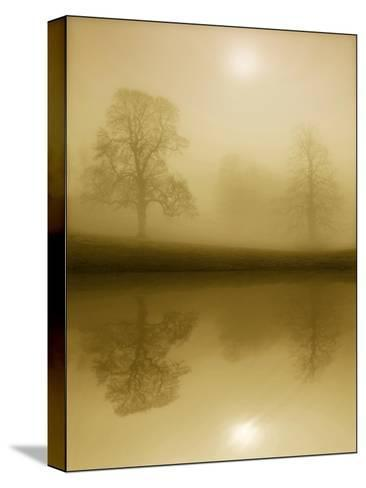 Timeless Winter-Adrian Campfield-Stretched Canvas Print