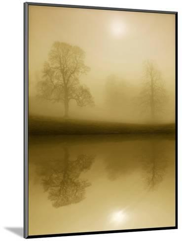 Timeless Winter-Adrian Campfield-Mounted Photographic Print