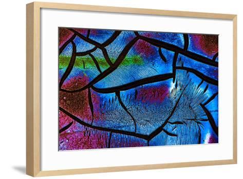 Glow in the Dark 2-Ursula Abresch-Framed Art Print