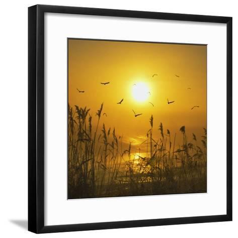 Dreams That Fly Away-Adrian Campfield-Framed Art Print