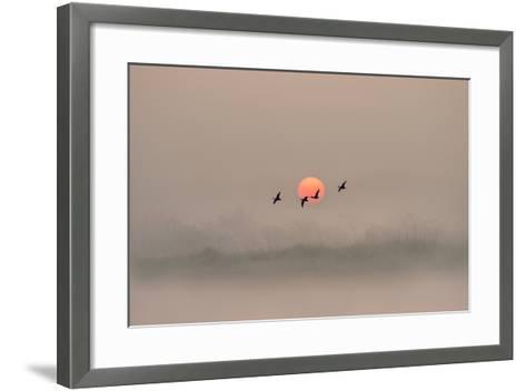 Dawn over the Marshland-Adrian Campfield-Framed Art Print