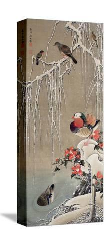 Mandarin Duck in the Snow 1-Jakuchu Ito-Stretched Canvas Print