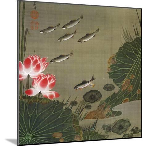 A Shoal of Trout and Lotus-Jakuchu Ito-Mounted Giclee Print