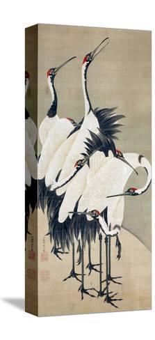 Seven Cranes-Jakuchu Ito-Stretched Canvas Print