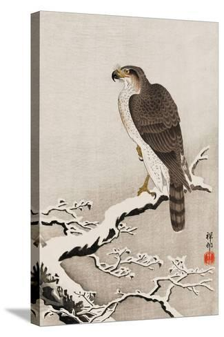 Hawk on Snow-Covered Branch-Koson Ohara-Stretched Canvas Print