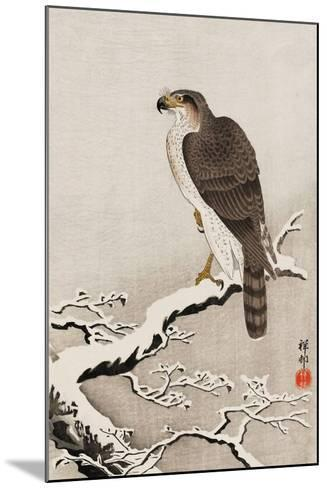 Hawk on Snow-Covered Branch-Koson Ohara-Mounted Giclee Print