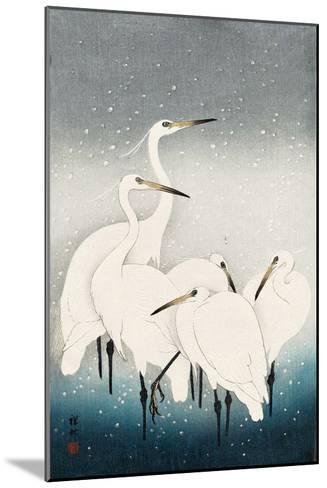 Five White Herons Standing in Water; Snow Falling-Koson Ohara-Mounted Giclee Print