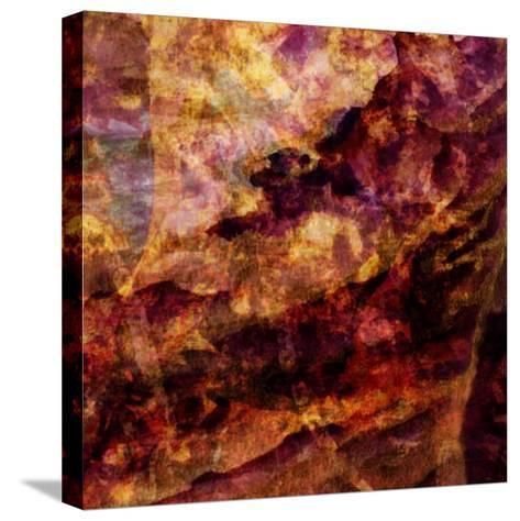 Soil-Meiya Y-Stretched Canvas Print