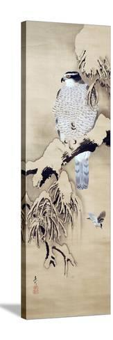Hawk on Snowy Branch-Zeshin Shibata-Stretched Canvas Print