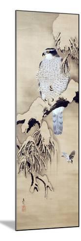 Hawk on Snowy Branch-Zeshin Shibata-Mounted Giclee Print
