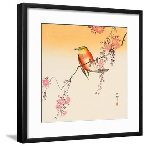 Red Bird and Cherry Blossoms-Koson Ohara-Framed Art Print
