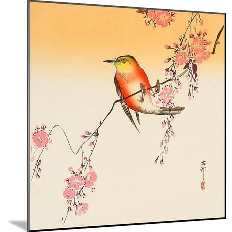 Red Bird and Cherry Blossoms-Koson Ohara-Mounted Giclee Print