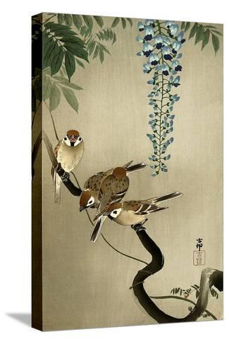 Sparrows and Wisteria-Koson Ohara-Stretched Canvas Print