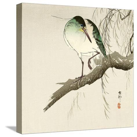Green Heron on Branch-Koson Ohara-Stretched Canvas Print