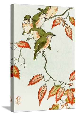 Five Small Birds Perch on a Acorn Tree-Koson Ohara-Stretched Canvas Print