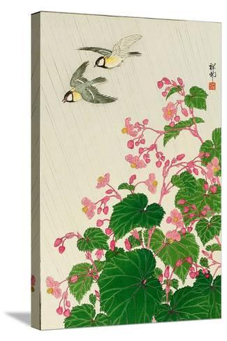 Two Birds and Begonia in Rain-Koson Ohara-Stretched Canvas Print
