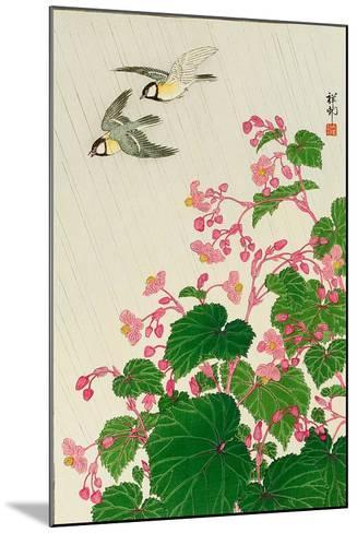 Two Birds and Begonia in Rain-Koson Ohara-Mounted Giclee Print