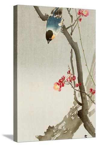 Blue Bird on a Plum Tree-Koson Ohara-Stretched Canvas Print