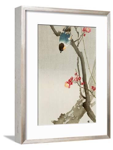 Blue Bird on a Plum Tree-Koson Ohara-Framed Art Print