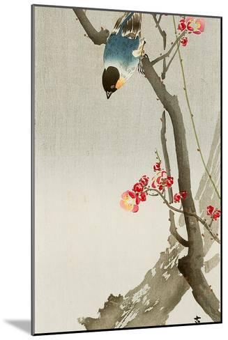 Blue Bird on a Plum Tree-Koson Ohara-Mounted Giclee Print