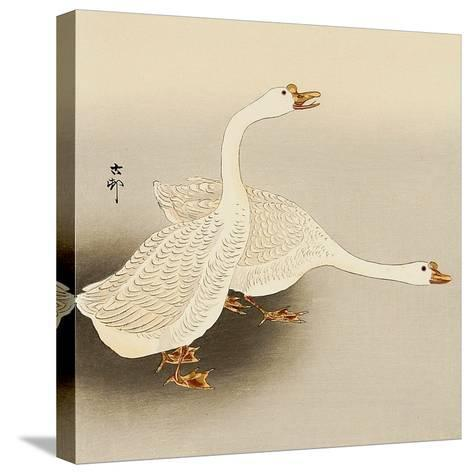 Two White Geese-Koson Ohara-Stretched Canvas Print