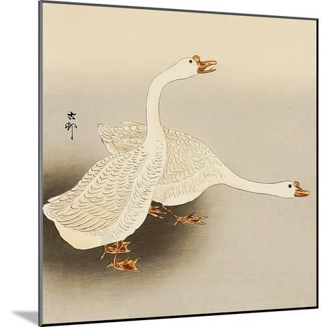 Two White Geese-Koson Ohara-Mounted Giclee Print