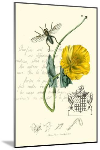 Naturalist's Montage VI-Vision Studio-Mounted Art Print