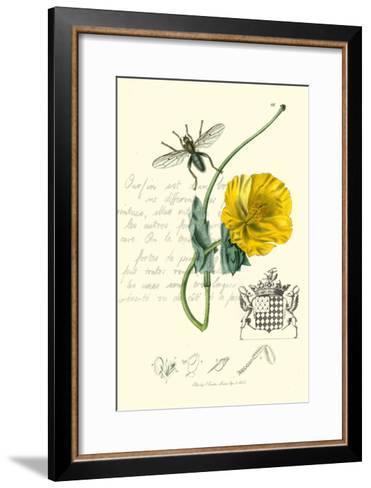 Naturalist's Montage VI-Vision Studio-Framed Art Print