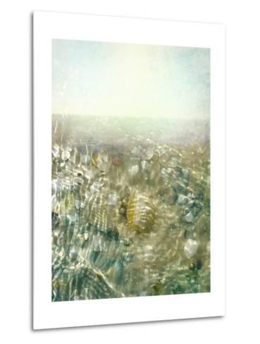Ocean Dream II-Pam Ilosky-Metal Print