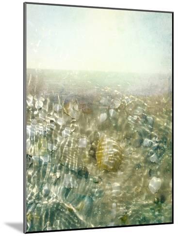 Ocean Dream II-Pam Ilosky-Mounted Art Print