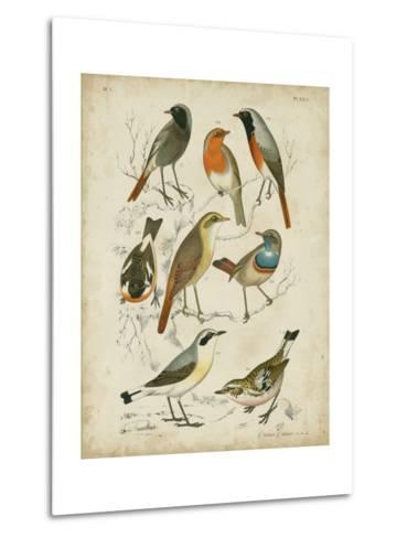 Non-Embellished Avian Gathering I-G^ Lubbert-Metal Print