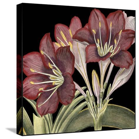 Dramatic Blossoms I-Vision Studio-Stretched Canvas Print