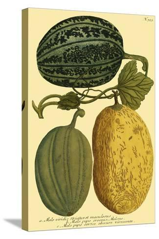 Antique Melons I--Stretched Canvas Print