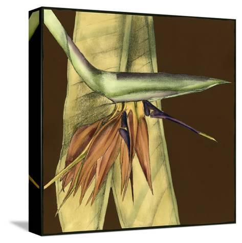 Small Striking Tropical II-Jennifer Goldberger-Stretched Canvas Print