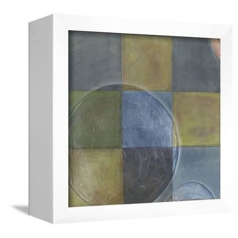 Circumspect III-Erica J^ Vess-Framed Canvas Print