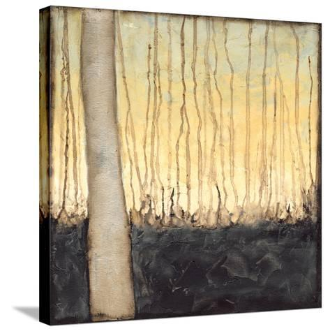 Winter Reverie IV-Jennifer Goldberger-Stretched Canvas Print