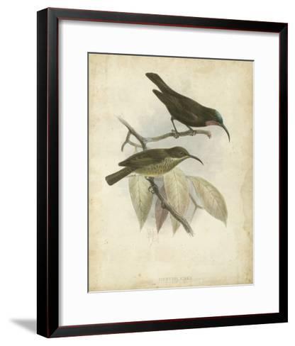 Antique Gould Hummingbird I-John Gould-Framed Art Print