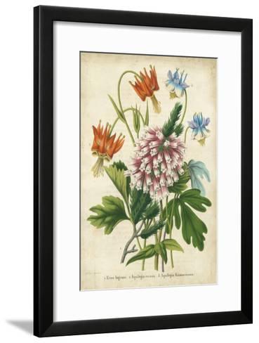 Summer Medley VI-G. Severeyns-Framed Art Print