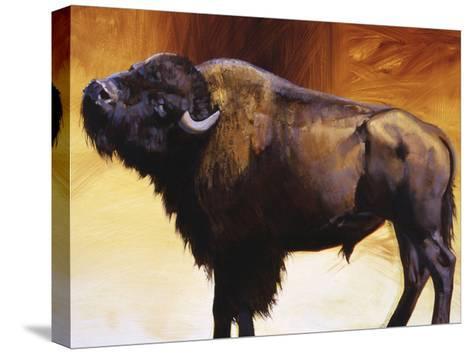 Big Itch-Julie Chapman-Stretched Canvas Print