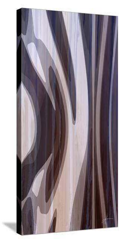 Bentwood Panel I-James Burghardt-Stretched Canvas Print
