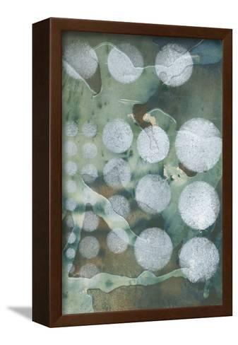 Topo-Graphic II-Jennifer Goldberger-Framed Canvas Print