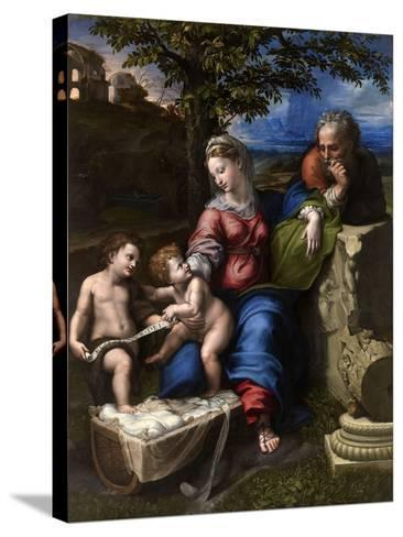 The Holy Family with an Oak Tree, 1518-1520-Raphael-Stretched Canvas Print
