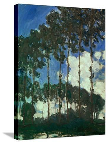 Poplars on the Epte, 1891-Claude Monet-Stretched Canvas Print