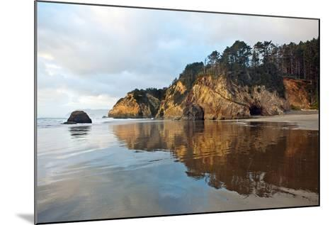 The Wet Sand on a Beach at Oregon's Hug Point-Vickie Lewis-Mounted Photographic Print