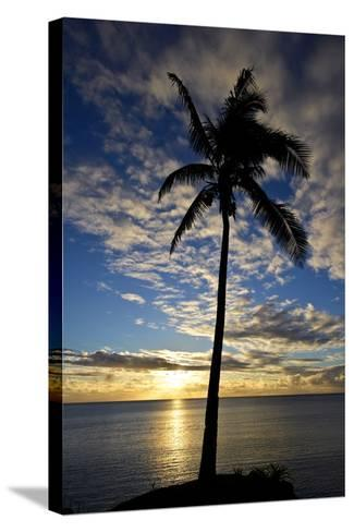 An Idyllic Palm Tree Silhouette Overlooking the Ocean at Sunset-Jason Edwards-Stretched Canvas Print