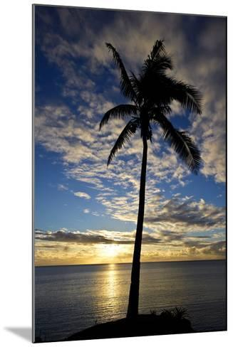 An Idyllic Palm Tree Silhouette Overlooking the Ocean at Sunset-Jason Edwards-Mounted Photographic Print