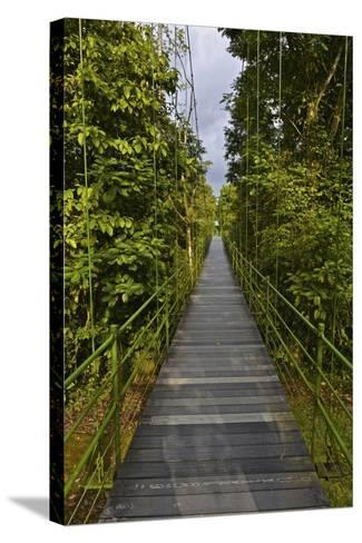 A Boardwalk Leads Through the Rain Forest at Costa Rica's La Selva Biological Station-Kike Calvo-Stretched Canvas Print